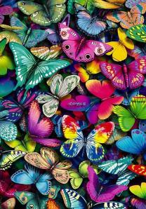 mariposa botnet
